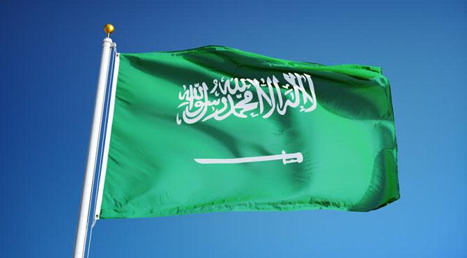 سعودی عرب کا اعلیٰ سطح کا وفد آج پاکستان پہنچے گا