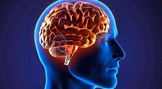 مرنے کے بعد دماغ کتنی دیر زندہ رہ سکتا ہے؟نئی تحقیق نے پرانے دعوے جھوٹے ثابت کر دیئے
