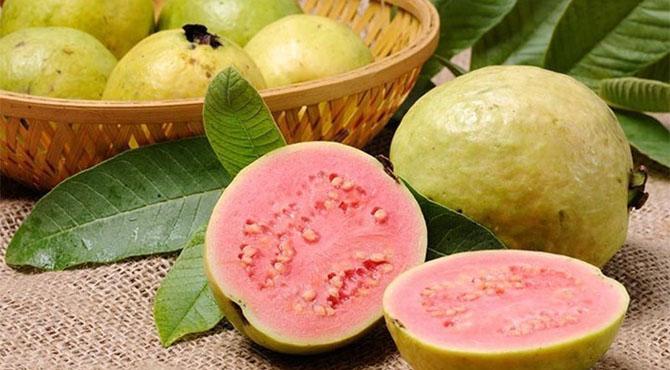 آیئے آج امرود کو جانتے ہیں