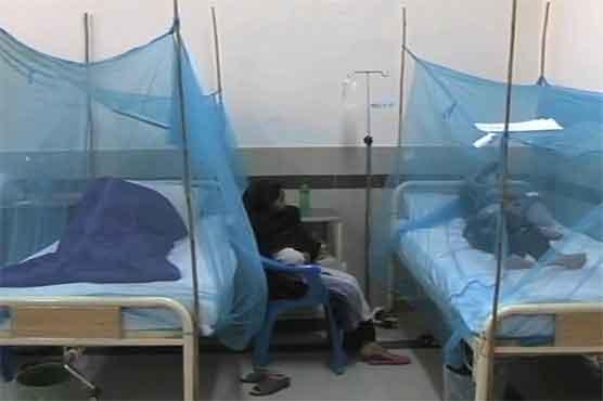 ڈینگی نے خیبرپختونخوا میں پنجے گاڑ لئے ،مزید 410افراد بارے افسوسناک خبر