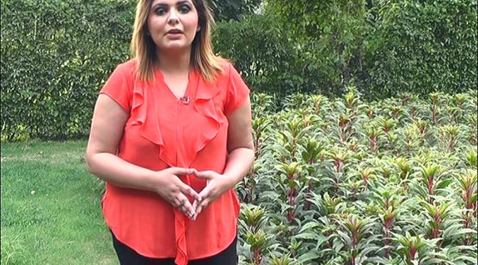 پرانے گیت پرانی غزلیں کاکشور کمار کی یاد میں خصوصی پروگرام