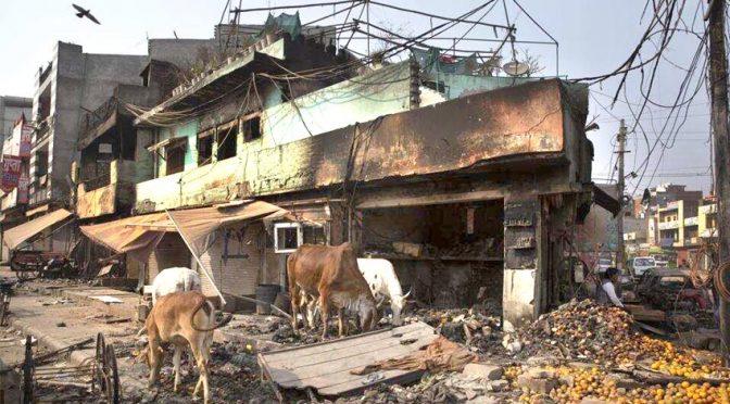 بھارت ، مسلمانوں پر حملے جاری ،ہلاکتیں 42ہو گئیں ،اقوام متحدہ کا نوٹس ، کینیڈا نے اپنے شہریوں کو بھارت جانے سے روک دیا